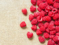 Many red ripe raspberry fruit on gray linen table cloth with copy space design ready Stock Photography