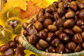 Many ripe chestnuts in a basket Royalty Free Stock Photography