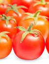 Many ripe tomatoes Royalty Free Stock Photo