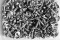 Many screws closeup in a plastic container Royalty Free Stock Image