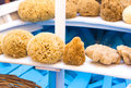 Many Sea Sponges Lay On A Boat