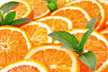 Many sliced oranges Royalty Free Stock Photo