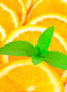Many sliced oranges and plant Royalty Free Stock Photo