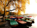 Many small boats the boat docked at the lakeside dock in autumn the photo was taken in november Stock Images