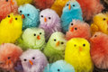 Many small colorful easter chickens Royalty Free Stock Photography