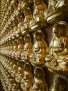 Many statue of gold Buddha Side Perspective Stock Images