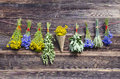 Many summer medical herbs bunches on wooden wall various old farm Royalty Free Stock Image