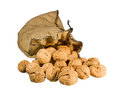 Many walnuts falling out burlap sack isolated Royalty Free Stock Photography