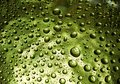 Many water drops Stock Image