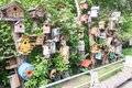 Many wooden birdhouse made by children