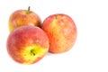 Manzanas frescas rojas en el fondo blanco Fotografía de archivo libre de regalías