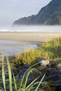 Manzanita coast Royalty Free Stock Image