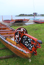 Maori boats traditional wood carved canoes on the shore in new zealand in rainy weather Stock Photos