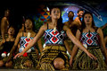 Maori Cultural Show Royalty Free Stock Photo