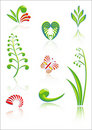 Maori Koru Design Color Elements Set Stock Image
