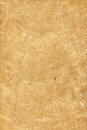 Maple bird's eye (wood texture) Royalty Free Stock Photo