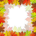 Maple leaf background Royalty Free Stock Image