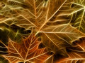 Maple leaf background abstract illustration autumn Stock Photo