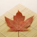 Maple leaf on bamboo mat. Stock Photography