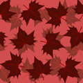 Maple leaf pattern Royalty Free Stock Photo