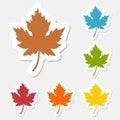 Maple leaf sticker set Royalty Free Stock Photo