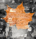Maple leaf on a stone wall grunge autumn background Stock Photo