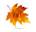 Maple leaf in triangular style with hand drawn word 'Fall'. Royalty Free Stock Photo