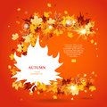 Maple leaves bright background with space for text Royalty Free Stock Photos