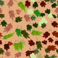 Maple Leaves Vector Seamless Pattern autumn ginger style