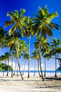 Maracas Bay Royalty Free Stock Photography