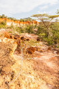 Marafa canyon kenya wonderful orange colors at sunset in also said the hell s kitchen malindi region Stock Photography
