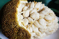 Marang or johey oak fruit picture of an open Royalty Free Stock Photos
