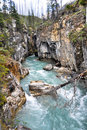 Marble canyon at Kootenay National Park (Canada) Royalty Free Stock Photos
