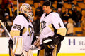 Marc-Andre Fleury and Brent Johnson Peguins (NHL) Royalty Free Stock Photos