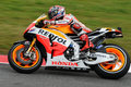 Marc Marquez HONDA Repsol MotoGP GP of Italy 2013 Mugello Circuit Royalty Free Stock Photo