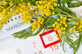 8 March card - mimosa flowers over the calendar with framed 8 March date