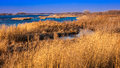 MARCH 8, 2017 - Grand Island, Nebraska -PLATTE RIVER, UNITED STATES - landscape of Platte River, Midwest. Royalty Free Stock Photo