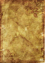 Marco floral del grunge en el papel viejo del pergamino .old con el patt floral Fotografía de archivo libre de regalías