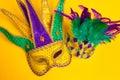 Mardi Gras Mask Son Yellow Bac...