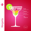 Margarita cocktail set of cocktails infographics illustration Stock Images