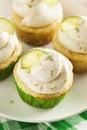 Margarita cupcakes hecha en casa con helar Imagen de archivo libre de regalías