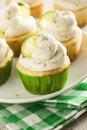 Margarita cupcakes hecha en casa con helar Fotografía de archivo