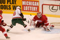Marian gaborik tries to score on dominik hasek of the minnesota wild shoots the puck during a game against the detroit red wings Stock Photo