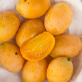 Marian plum sweet tropical fruit Royalty Free Stock Images