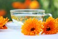 Marigold tea cup with calendula and flowers on a table selective focus shallow dof Royalty Free Stock Photography