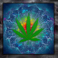 Marijuana art leaf colorful abstract Stock Photos