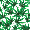 Marijuana background Stock Photography
