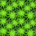 Marijuana background vector seamless patterns