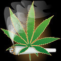 Marijuana-Cannabis-Joint Royalty Free Stock Photography
