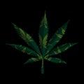 Marijuana leaf on black